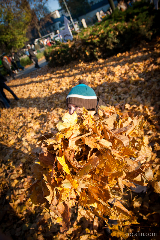 Dzieciak i góra liści
